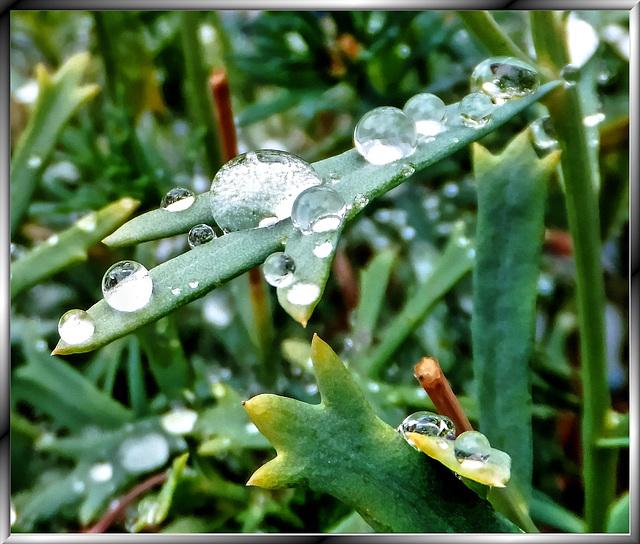 Power of Raindrops... ©UdoSm