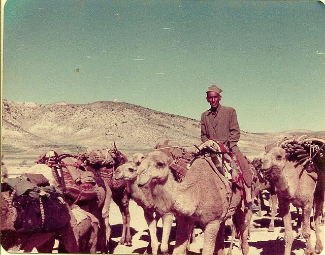 Qashqai nomads of Fars, Iran, 1977