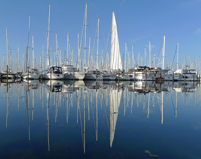 Germany - Heiligenhafen, marina