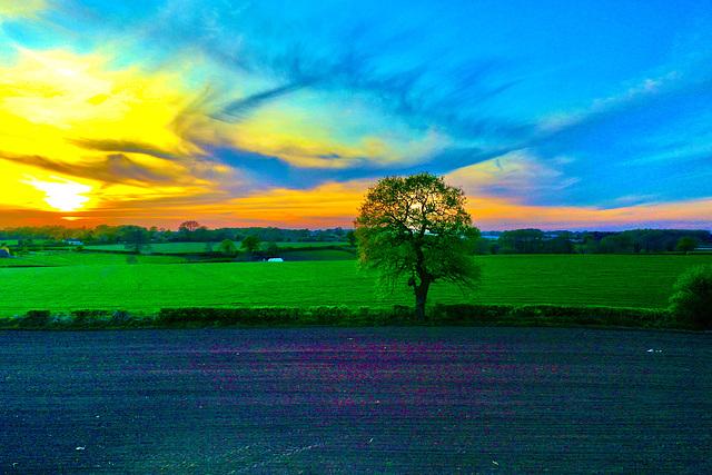 Late April sunset