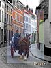 Horse tour with Bruges caption