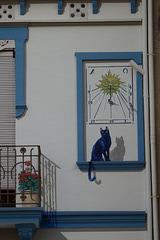 El gat fent ombra