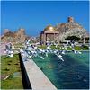Oman : Mutrah una splendida passeggiata nel golfo