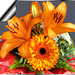 Lilies with Gerbera... ©UdoSm