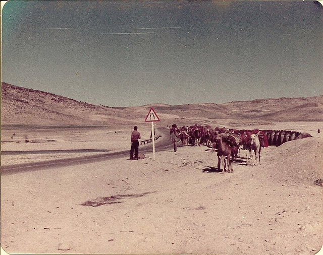 Qashqai tribe caravan in Fars, Iran, 1977