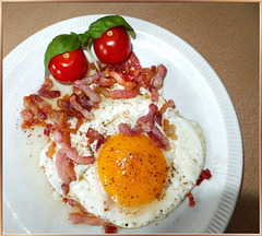 Ham and eggs...  ©UdoSm