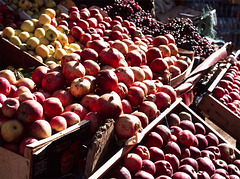 friuts of Marokko