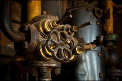 brass_beauty