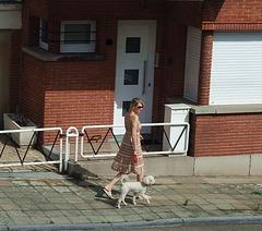 Promener le chien avec élégance