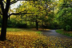 Herbstspaziergang - Autumn Walk - please look on black