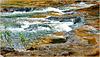 Ilhéus: acqua di sorgente scorre veloce