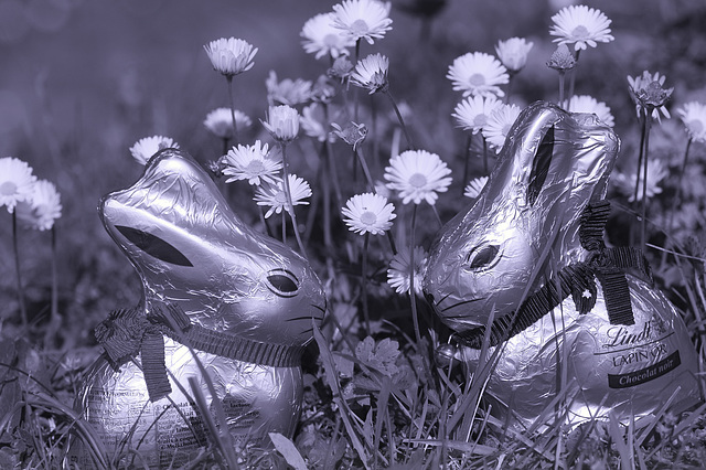 Happy Easter to all my friends!
