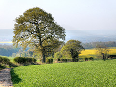 The Vale of Pickering