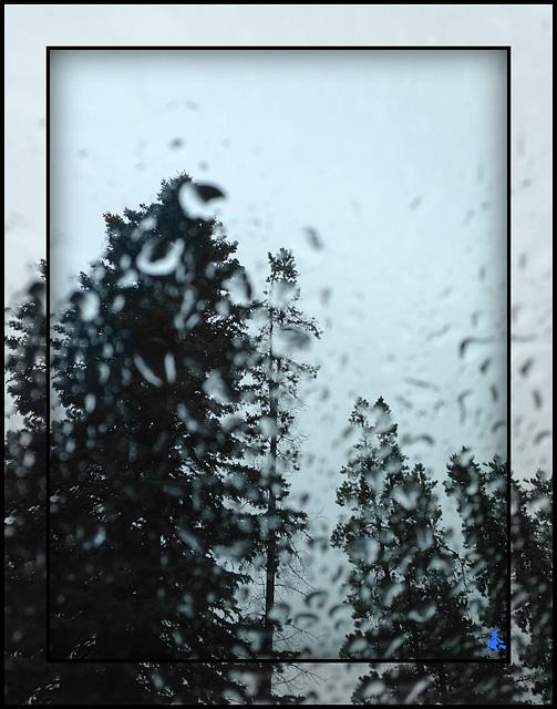 TSC: rain