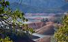Lake Shasta (1114)