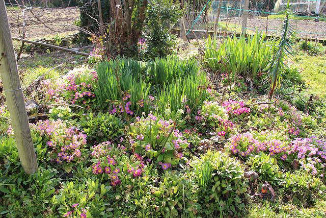 jardin d'Issoudun