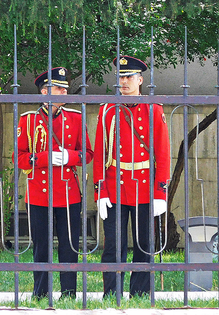 Presidential Palace guards