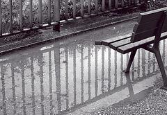 Reflets de pluie