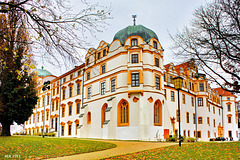 Celle, Herzogsschloss