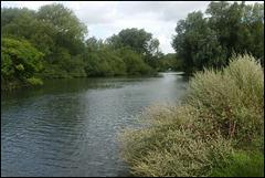 upstream to Fiddler's Island