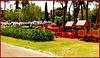 Parchi di Nervi : fiori e giochi a Villa Serra Gropallo