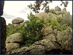 Granite and oak