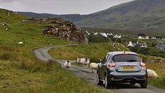 Staffin Standoff - Isle of Skye