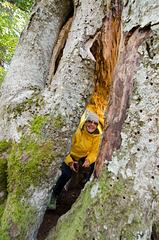 aNNa im Baum