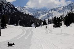 le ski..