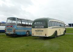 Buses Festival, Peterborough - 8 Aug 2021 (P1090410)