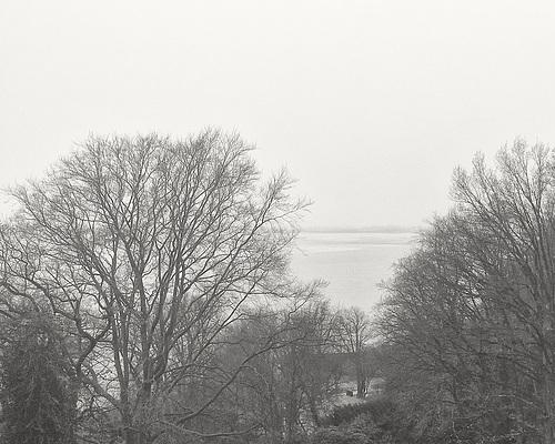 Blick von Baurs Park auf die Elbe // -elbblick 7453sm