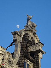 afternoon moon in Amsterdam