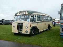 Buses Festival, Peterborough - 8 Aug 2021 (P1090463)