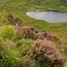 ¤ Gleninchaquin Park | Beara | IRELAND