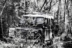 Land Rover Defender Hiding