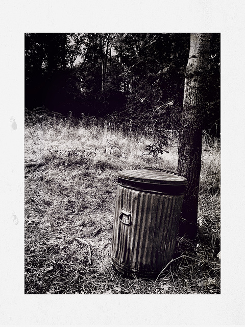 Park trash / Basura bosque / Poubelle nature