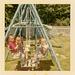 Backyard Swingers, July 1965