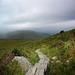 ¤ Hiking Torc Mountain | Beara | IRELAND