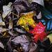 Blätterherbst