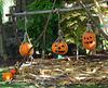 Halloween not so far