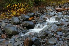 Near Rocky Creek