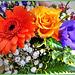 Sunday Flowers... ©UdoSm