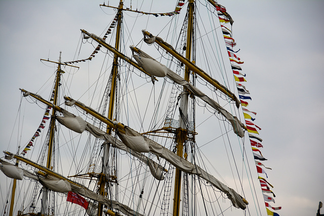 Sail 2015 – Masts of the Kruzenshtern