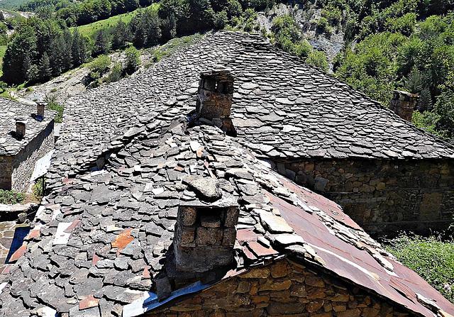Roofs at Dardhë