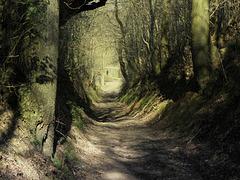 Path of no  return