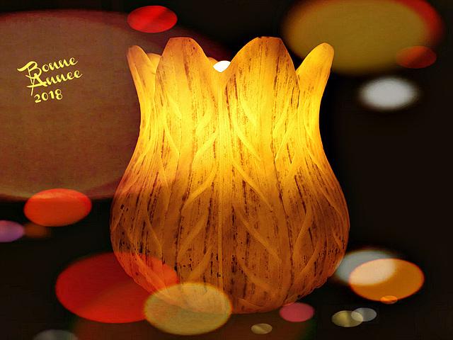 À l'aube du Nouvel An, acceptez de tout coeur les voeux les plus chaleureux pour une année exceptionnelle