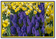 """While there is in the world spring,  """"There will always be poetry!"""" by Adolfo Bécquer"""