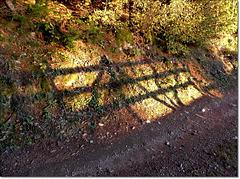 Faire barrière de son ombre.........