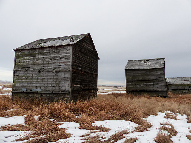 Rural decay in winter