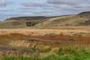 The colours of the Moorland